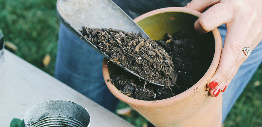 easy diy gift soil