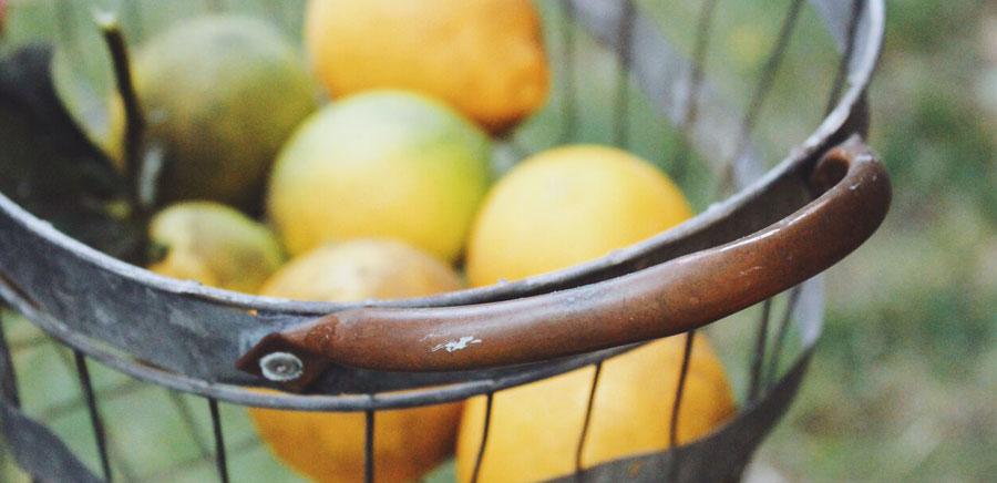 lemon diy lemons basket